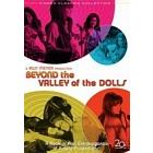 Изнанка долины кукол/Beyond the Valley of the Dolls (1970)