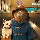 Микс Paddington: Red Axes, Le Couleur, Duran Duran, Mathias Schaffhäuse